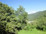 The Nature of Tavush Region